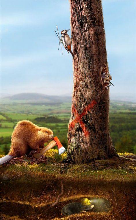 Hilarious Photoshopped Animals (30 pics)