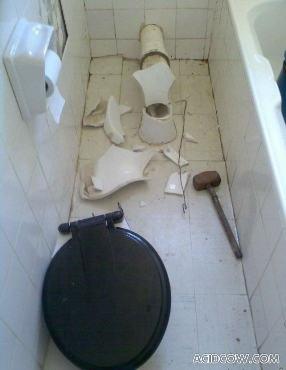 Surprise in an Indian Toilet (5 pics)