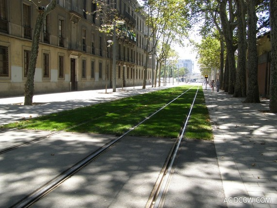 Europe's Grass-Lined Green Railways (16 pics)