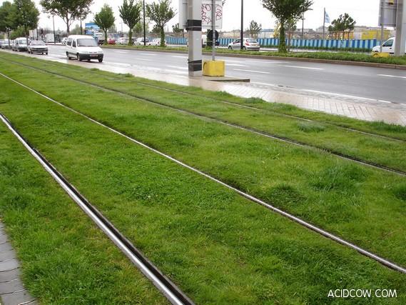 Europe's Grass-Lined Green Railways (16 pics)