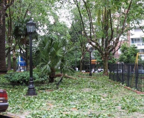 Hail in Argentina (13 pics)