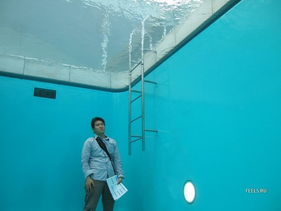 Japanese Pool with a Secret (7 pics)
