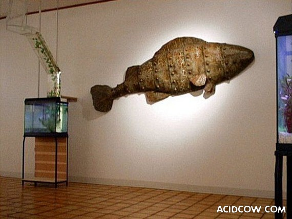 Interesting Aquarium (9 pics)