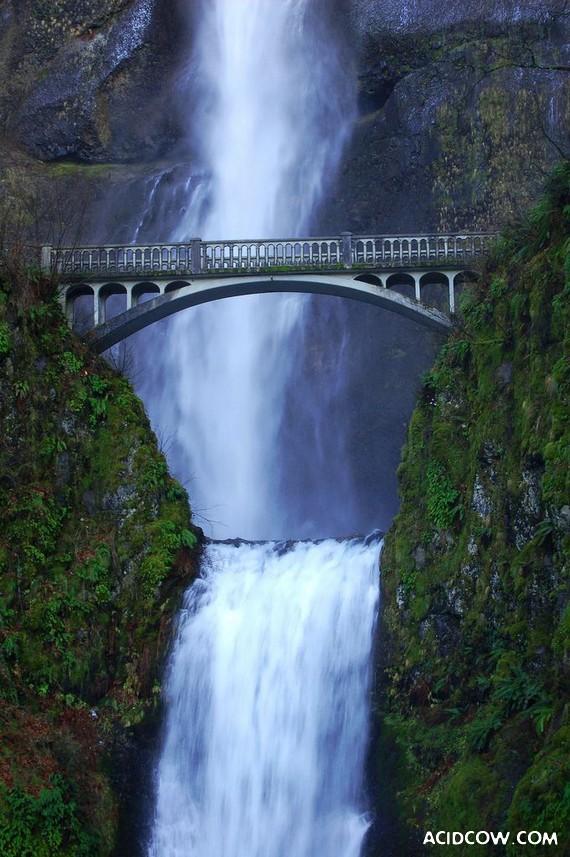 Photos of Bridges From Around the World (43 pics)