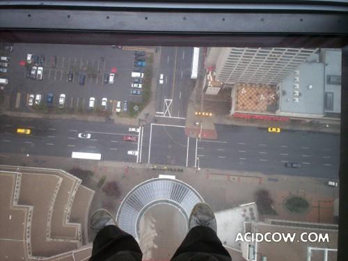 Glass Floor (19 pics)