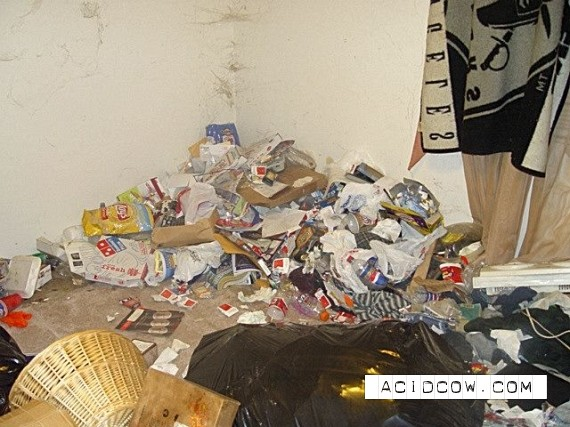 Dirty apartment (30 pics)