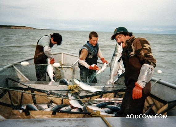 Fishing in Alaska (42 pics)