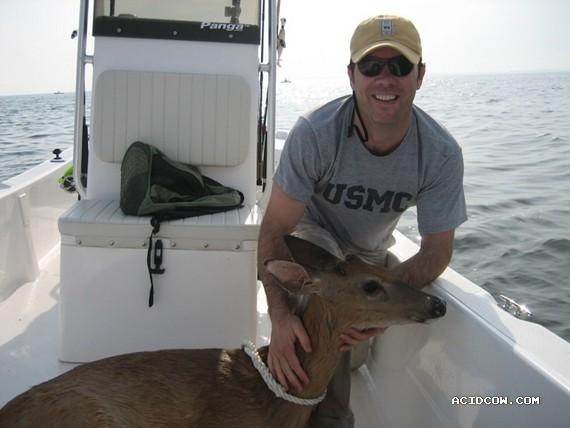 Deer fishing (6 pics)