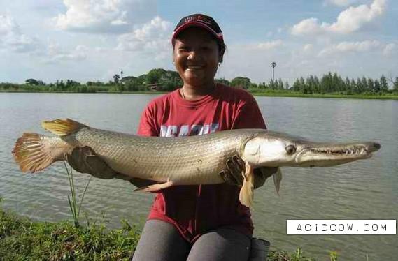 Fishing Thailand (39 pics)