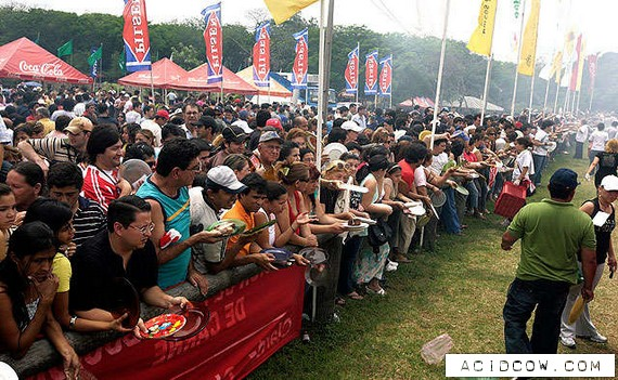 The world's largest barbecue (8 pics)