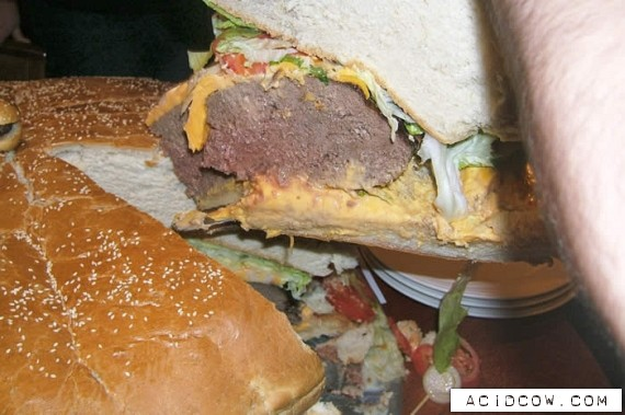 The biggest hamburger in the world! (19 pics)