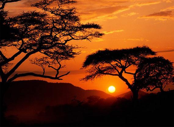 Sunset (74 photo)