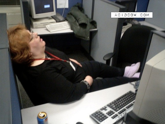 Sleeping at work (14 pics)