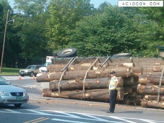 Overturned log truck (12 pics)