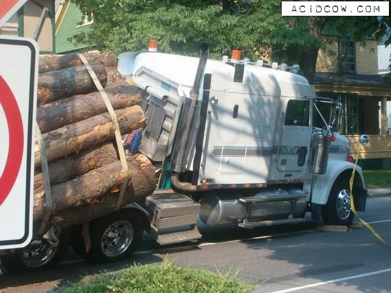 Overturned log truck (12 pics)
