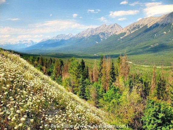 The Beauty in Canada (48 pics)