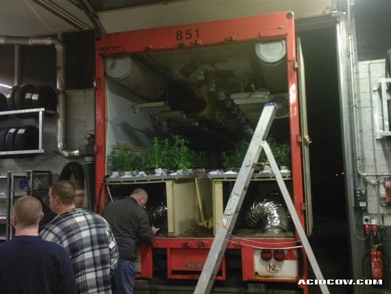 Mobile Marijuana Plantations... (17 pics)