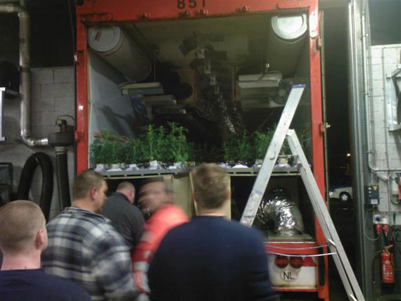 Mobile Marijuana Plantations... (17 pics)