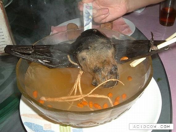 Bat soup!!! (3 pics)
