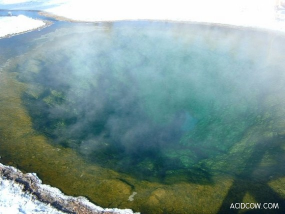 Morning Glory Pool in Yellowstone Park (14 pics)