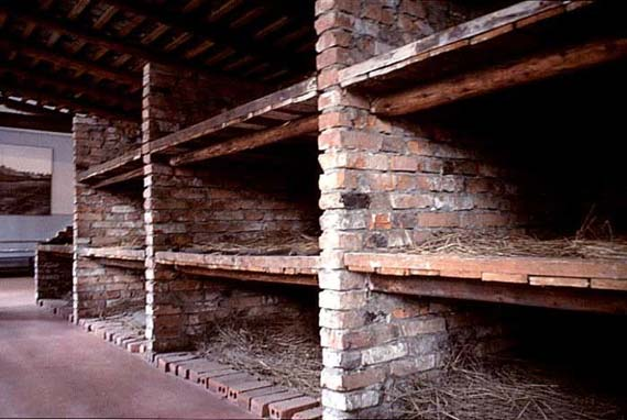 Auschwitz Concentration Camp (35 Pics)