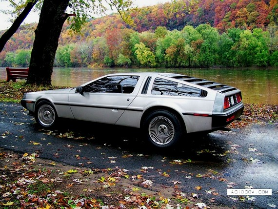 Back to the Future Car (17 pics)