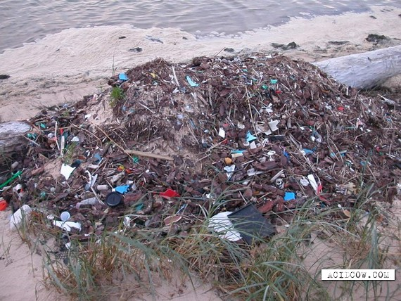 Most disgusting beaches (12 pics)