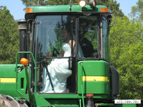 Unusual wedding transport (8 pics)