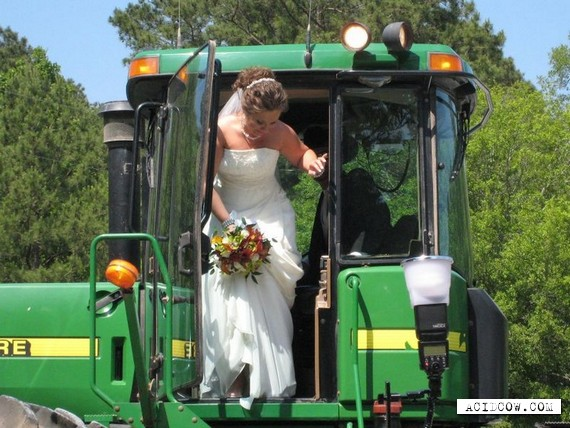 Unusual wedding transport (8 pics)