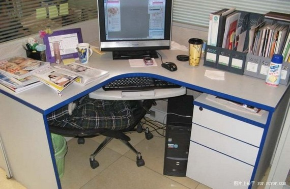 How to have a nap at work (7 pics)