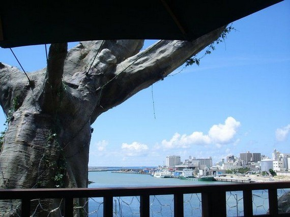 Restaurant on a tree (6 pics)