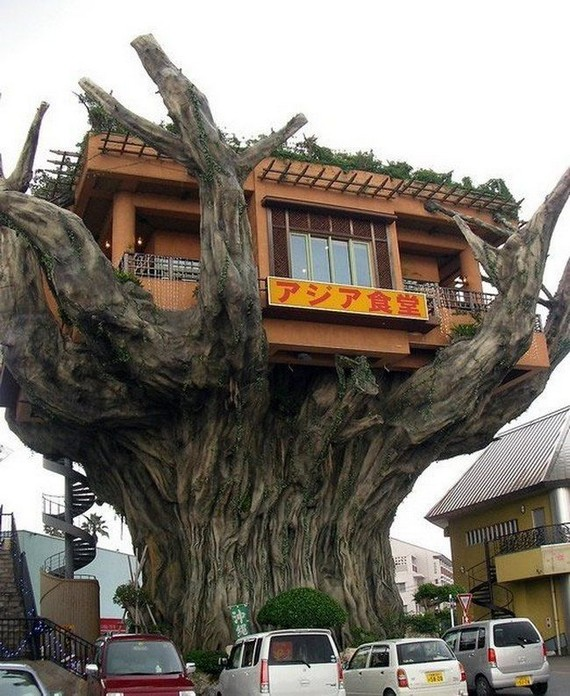 Restaurant on a tree (6 pics)