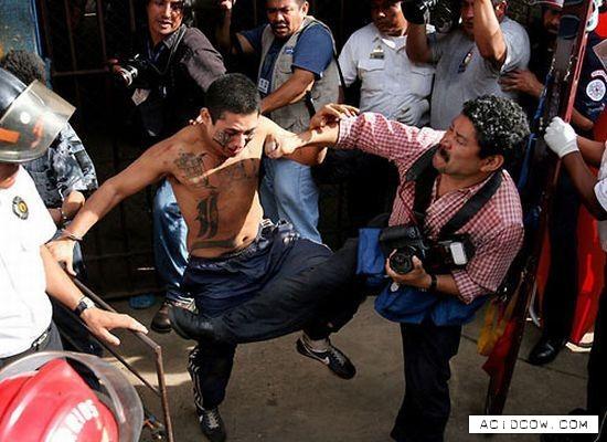Mara Salvatrucha Street Gang (34 pics)