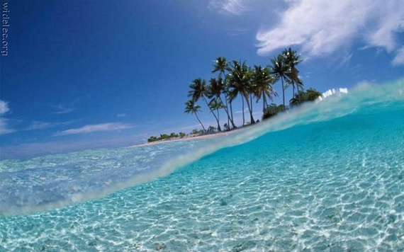 The Worlds Most Beautiful Beaches (23 pics)