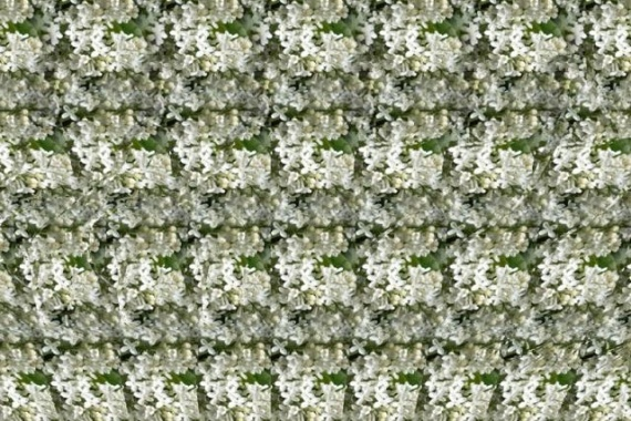 Autostereogram (100 pics)
