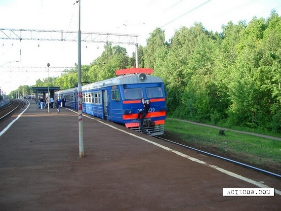 "Only in Russia: Say ""No"" to Train Tickets (28 pics)"