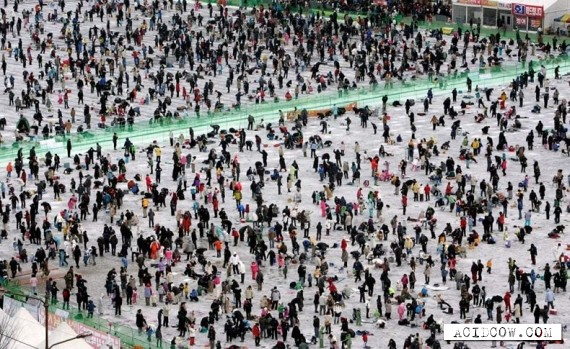 An annual ice fishing festival in S.Korea (14 pics)
