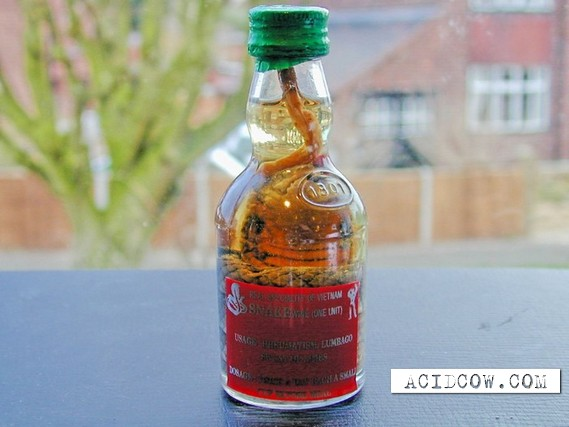 Vodka with suprize (17 pics)