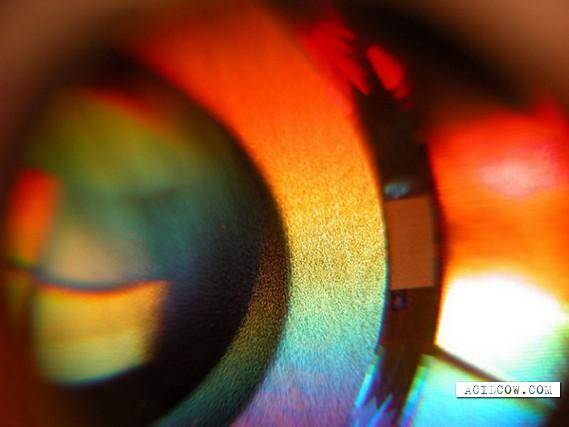 Vista CD with surprise (5 pics)