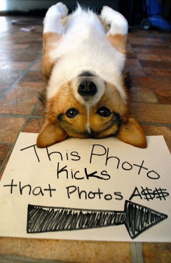 Funny picdump (130 pics)