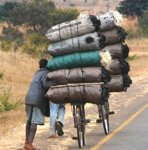 Only in Africa (34 pics)