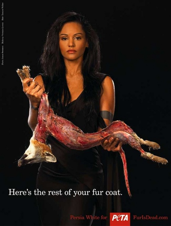 Save The Animals (31 pics)