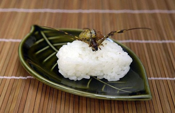 Insect Sushi (11 pics)