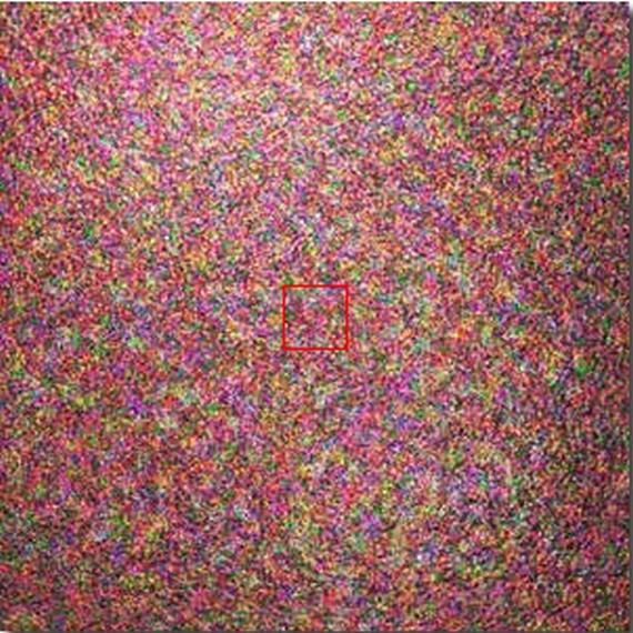 Super Microscope (41 pics)