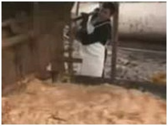 Driving fail with tons of disgusting waste food… (1.6 Mb)