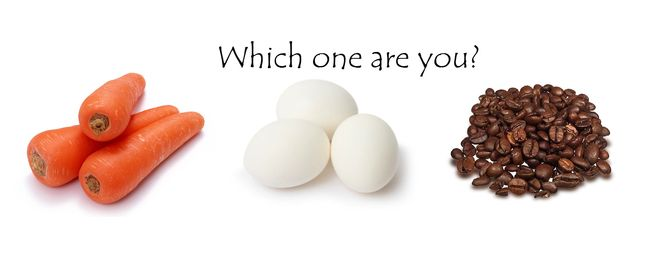 The Carrot, Egg, And Coffee Bean (10 pics)