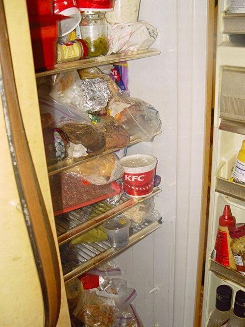 Trash apartment (30 pics)