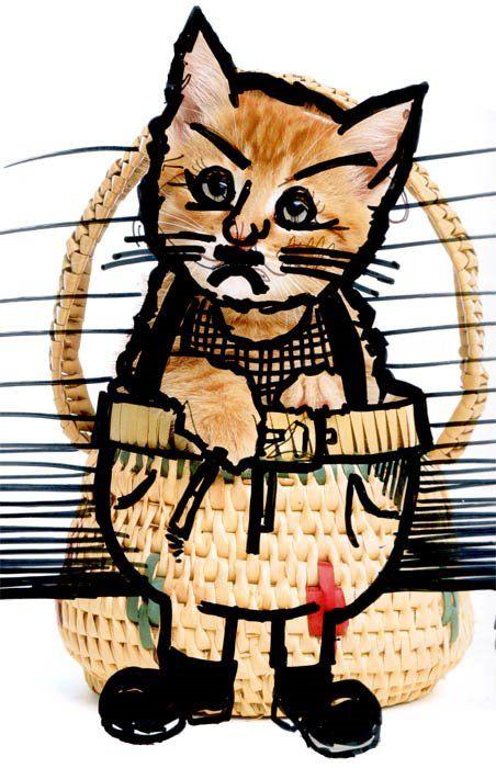 Kitti Graffiti (28 pics)