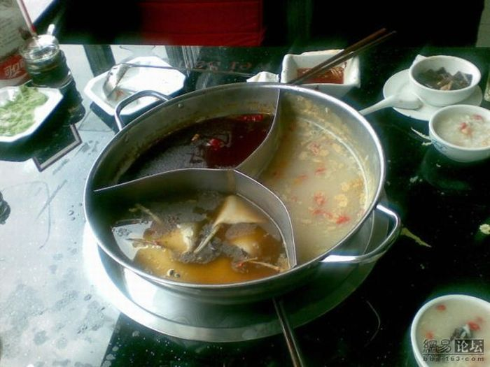 Waiter, there is a fly in my soup (6 pics)