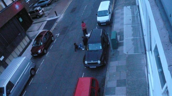 Unlucky cat burglar (12 pics)